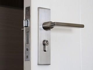 Metallic knob on white door