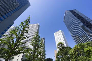 新宿高層ビル街快晴 青空 新緑 緑 春 超広角で見上げる コピースペース