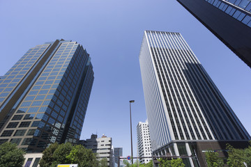 新宿高層ビル街 快晴 青空 緑 西新宿6丁目