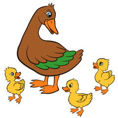 Cartoon birds for kids. Mother duck walks with her three cute little ducklings. They smile.