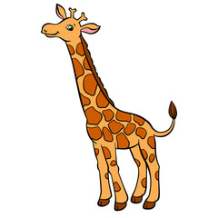 Cartoon wild animals for kids. Little cute spotted giraffe with long neck stands and smiles. He is happy.