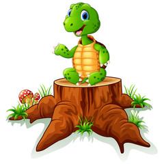 Cute turtle sit on tree stump