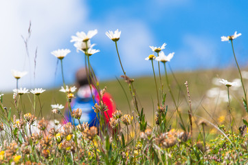 Blurred person behind flowers in a meadow while ago excursion in
