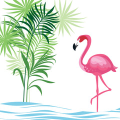 tropical illustration with flamingo