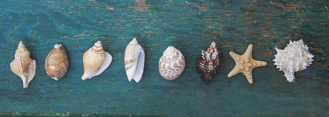 Starfish and seashell on the wooden background