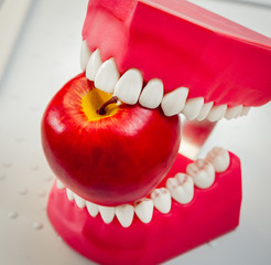 Dentures biting an apple