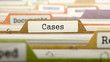 Cases - Folder Register Name in Directory. Colored, Blurred Image. Closeup View. 3D Render.