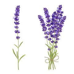Lavender Cut Flowers Realistic Image