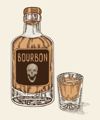 Whiskey in bottle and glass. Hand drawn bourbon drink vector