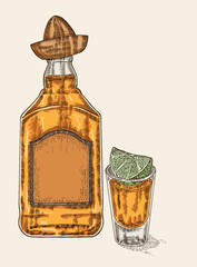 Tequila in bottle and glass. Hand drawn tequilan drink vector