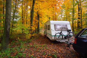 Caravan trailer with bicycle parked in a beautiful beech tree forest in autumn.