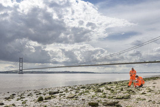 Ecologists inspecting beach by suspension bridge. The Humber Bridge, UK was built in 1981 and at the time was the world's largest single-span suspension bridge