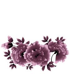 gray peony flower vector illustration
