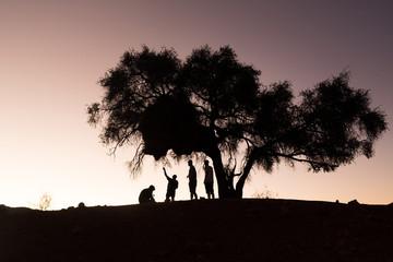 La nuit tombe en Namibie