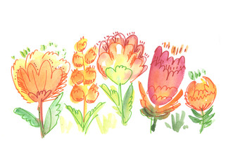 rustic hand drawn floral illustration. watercolor pain image. de