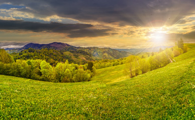 rural meadow with trees in mountains at sunset