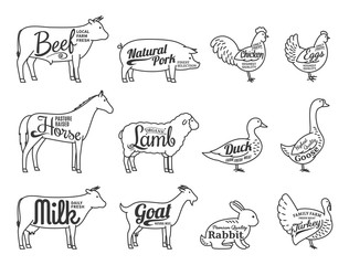 Vector Butchery Logo. Farm Animals Thin Line Icons Collection Is