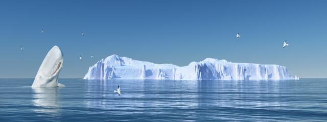 Pottwal, Seemöwen und Eisberg