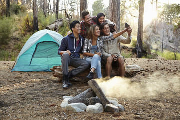 Four young adult friends taking smartphone selfie by campfire in forest, Los Angeles, California, USA