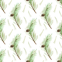 Pine branches seamless pattern.Coniferous twig and pinecone.Watercolor hand drawn illustration.