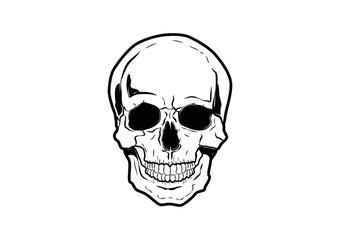 Illustration Vector Graphic Skull Pirate