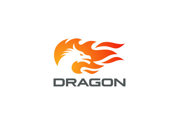 Dragon Fire Flame Logo vector Negative space Logotype icon