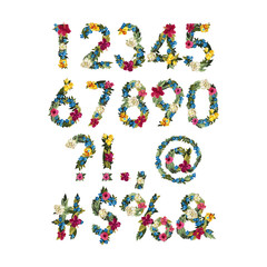 Numbers, Vector Colorful Flower Font For Your Design