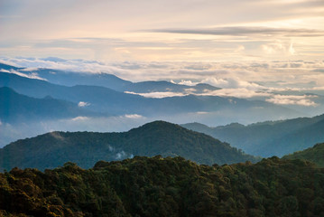 Sunrise over jungle in cameron highlands, Malaysia