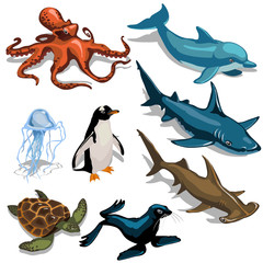 Fish, Dolphin, seal and other members of deep sea
