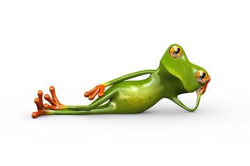 3d frog stylish lying on floor