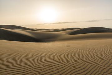 Sunrise in Desert - beautiful landscape with sand dunes