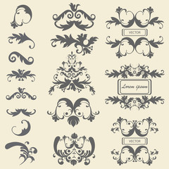 Set monograms, floral ornaments baroque style