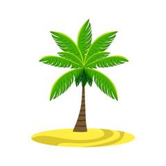 Single Palm Tree On The Beach