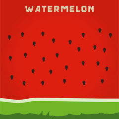 backgroundof the watermelon