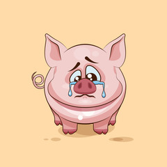 isolated Emoji character cartoon sad and frustrated Pig crying, tears sticker emoticon