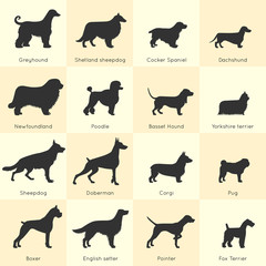 Dogs Breed Icon Set