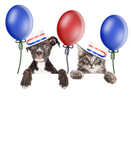 Fototapete - Kitten and Puppy American Voters