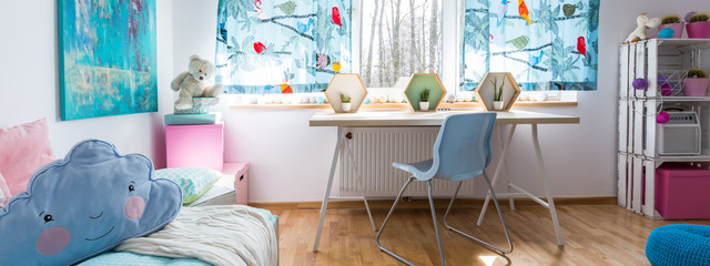 Room for a girl who loves pink and blue!