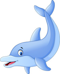 Cute dolphin cartoon