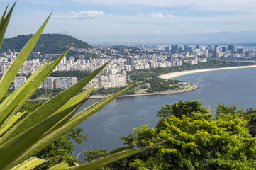 Scenic skyline view of the Botafogo and Flamengo neighborhoods at Guanabara Bay in Rio de Janeiro, Brazil from the greenery of Sugarloaf Mountain