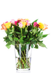 Bouquet of roses in the vase on white background