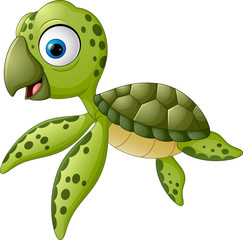 Cartoon baby turtle swimming
