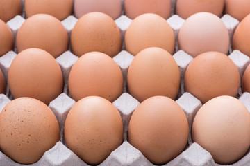 close up an eggs