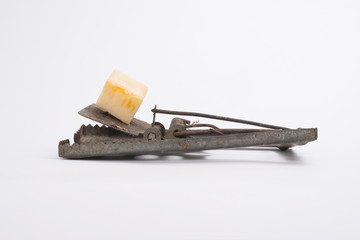 mousetrap baited with cheese isolated on white background.