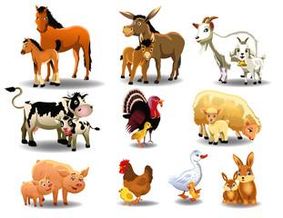 farm animals and their babies