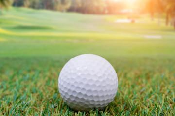 Golf ball in field