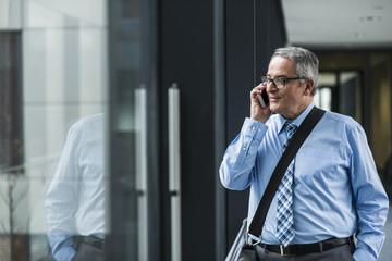 Geschäftsmann,Fenster,Brille,sprechen,telefonieren,Unterhaltung,Verbindung