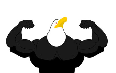 Strong Eagle athlete. fitness bird. Wild animal bodybuilder with