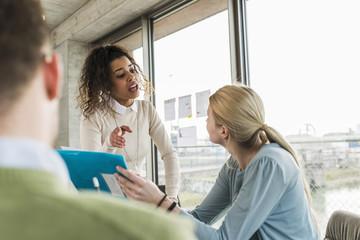 besprechen,Gemeinsam,arbeiten,sprechen,Fenster,Zusammenarbeit,ansehen
