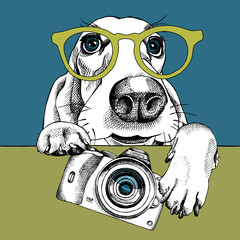 The poster with a portrait of the dog Basset Hound in the glasses and with the camera. Vector illustration.